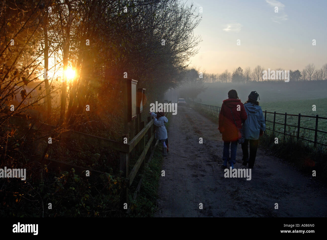 Family and friends walking down a country track at Thorncombe Woods in England UK Stock Photo
