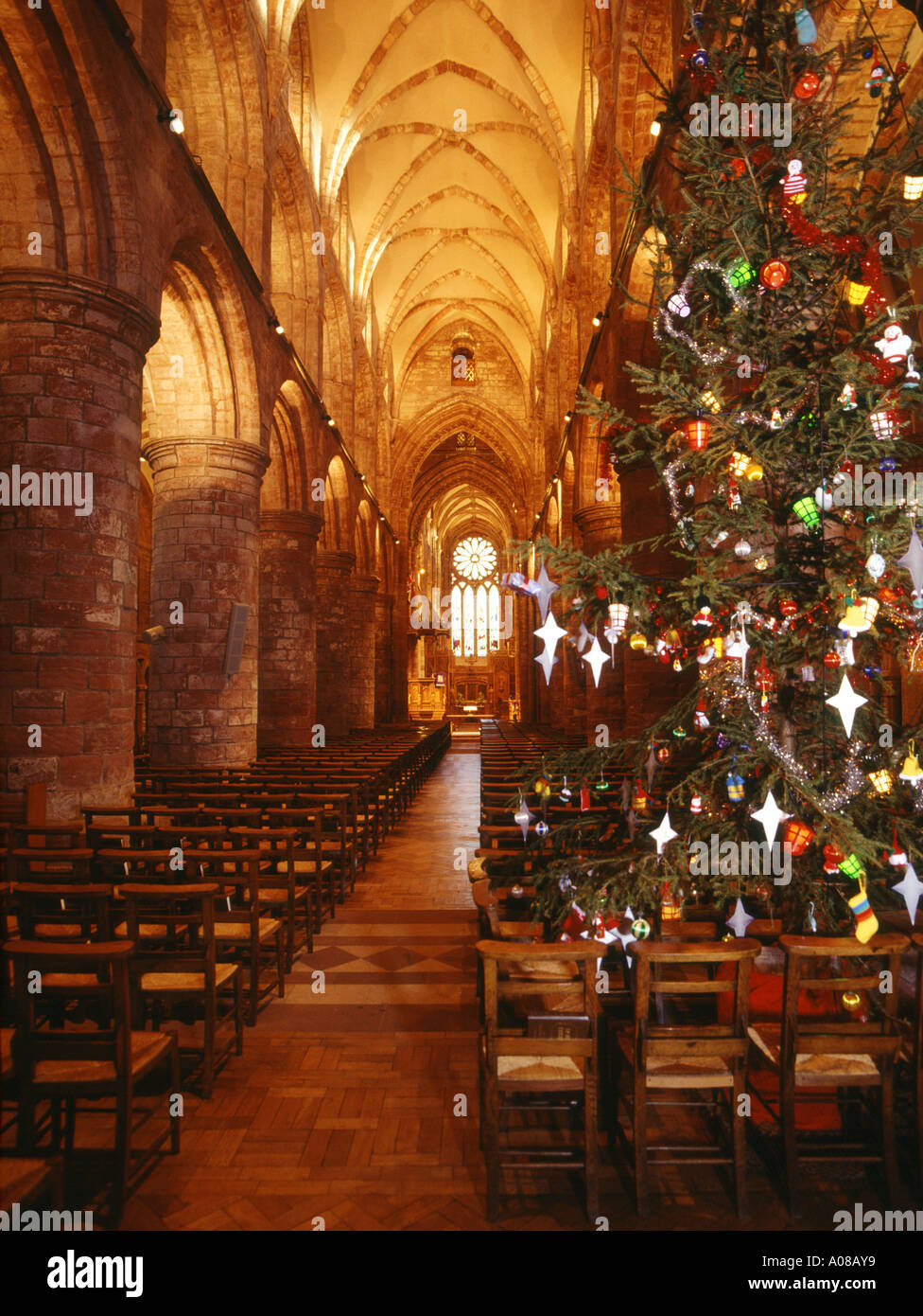 dh St Magnus Cathedral KIRKWALL ORKNEY Orkneys Cathedrals at Christmas tree and aisle interior Stock Photo