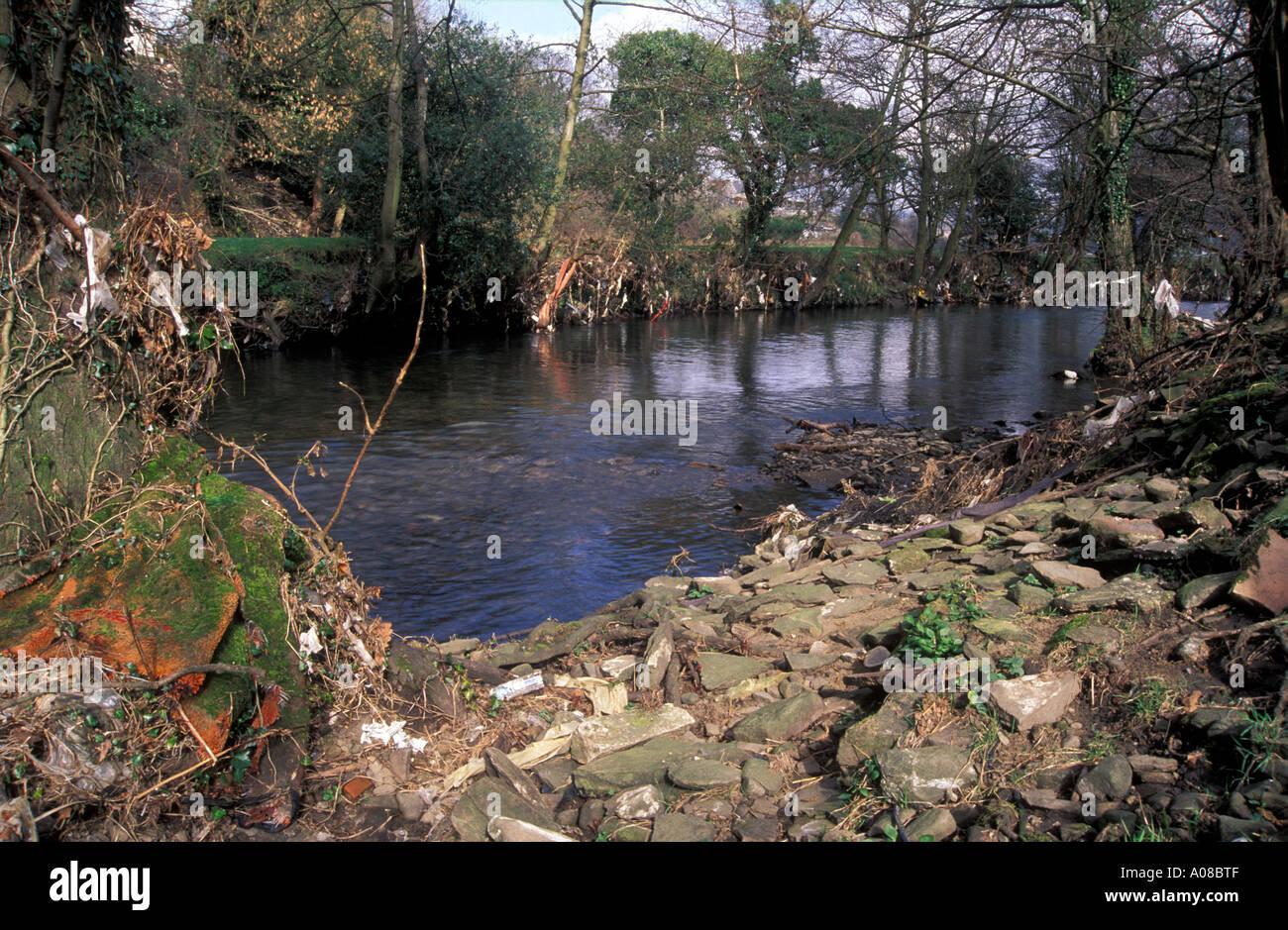 Plastic debris trapped in riverside branches, Afon Rhymney, Machen, Wales - Stock Image