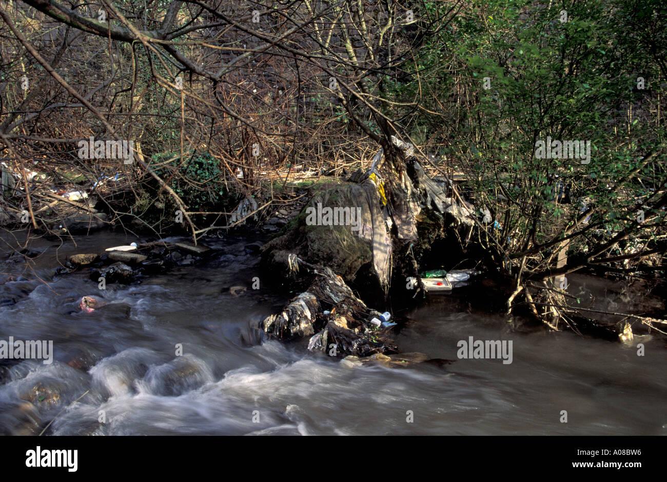 Plastic debris trapped in riverside branches, Afon Llynfi, Caerau, Wales - Stock Image