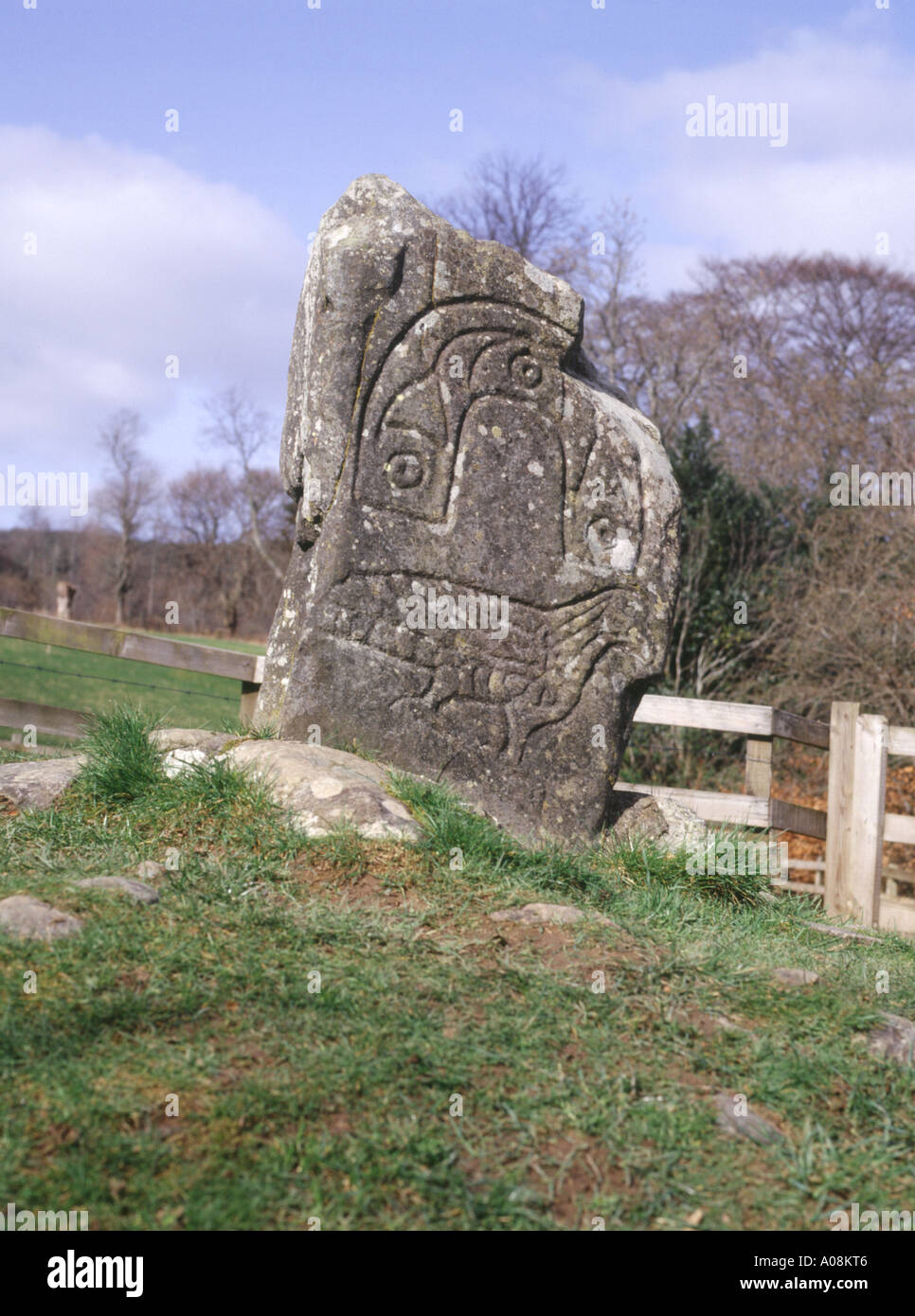 dh Eagle stone Pictish art STRATHPEFFER CROMARTY ROSS Rock pict prehistoric scotland sculpture britain celtic stones carved picts Stock Photo