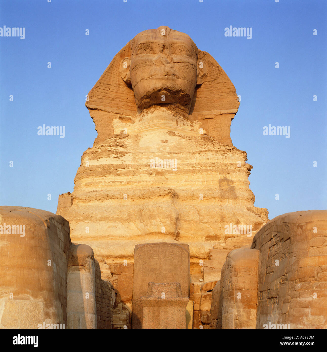The Sphinx at sunrise, Giza, Cairo, Egypt, North Africa. Front view - Stock Image