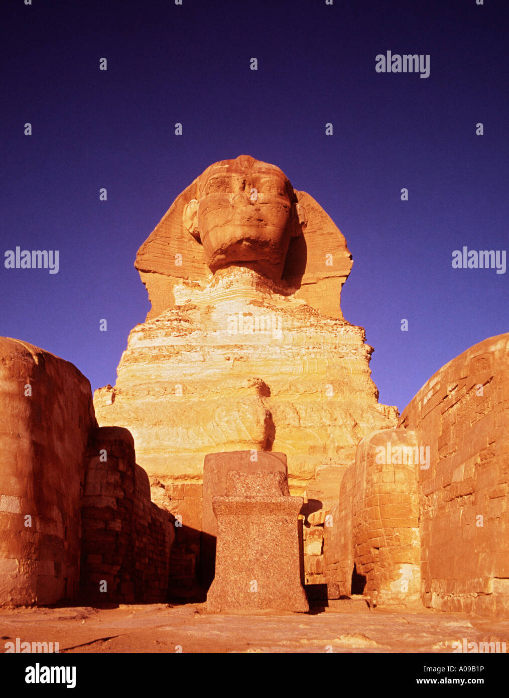 The Sphinx at sunrise Giza, Cairo, Egypt, North Africa. Dramatic front view - Stock Image