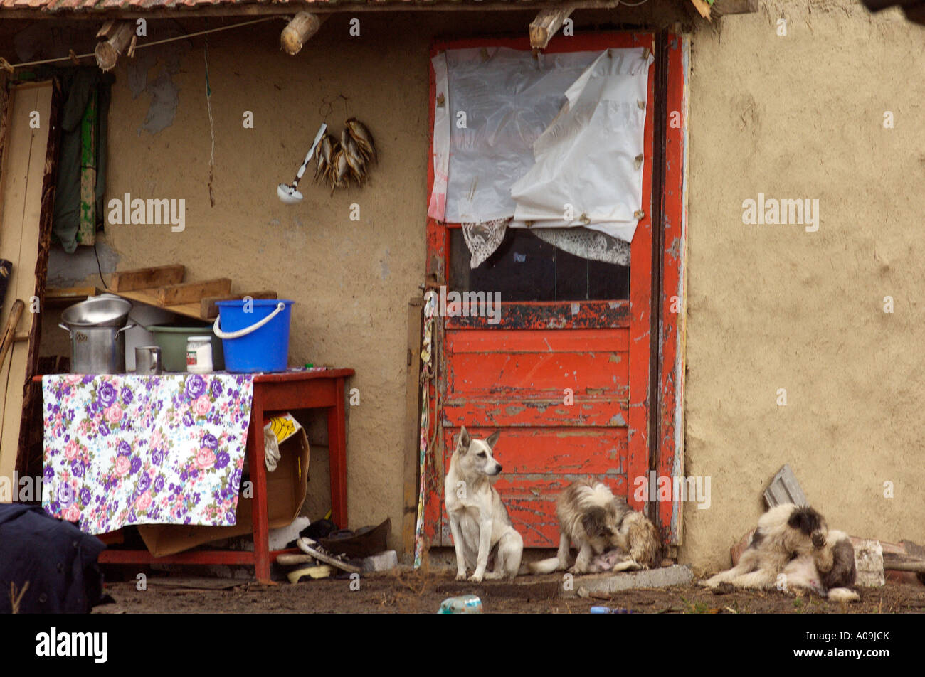 Romani Gipsy community village in the district of Spantov, southeastern Romania. Stock Photo
