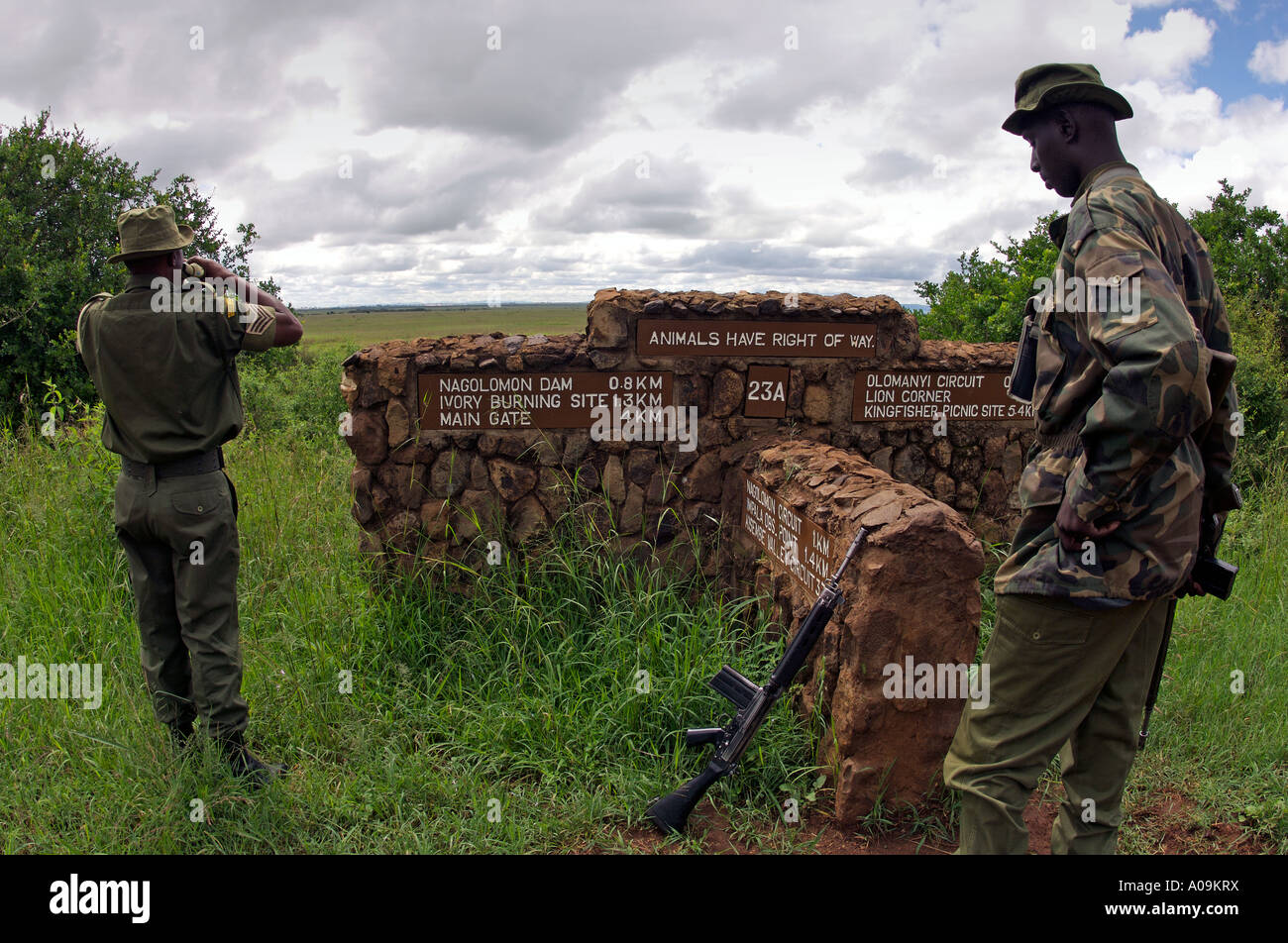 Rangers from the Kenya Wildlife Service (KWS) patrolling Nairobi National  Park for the security
