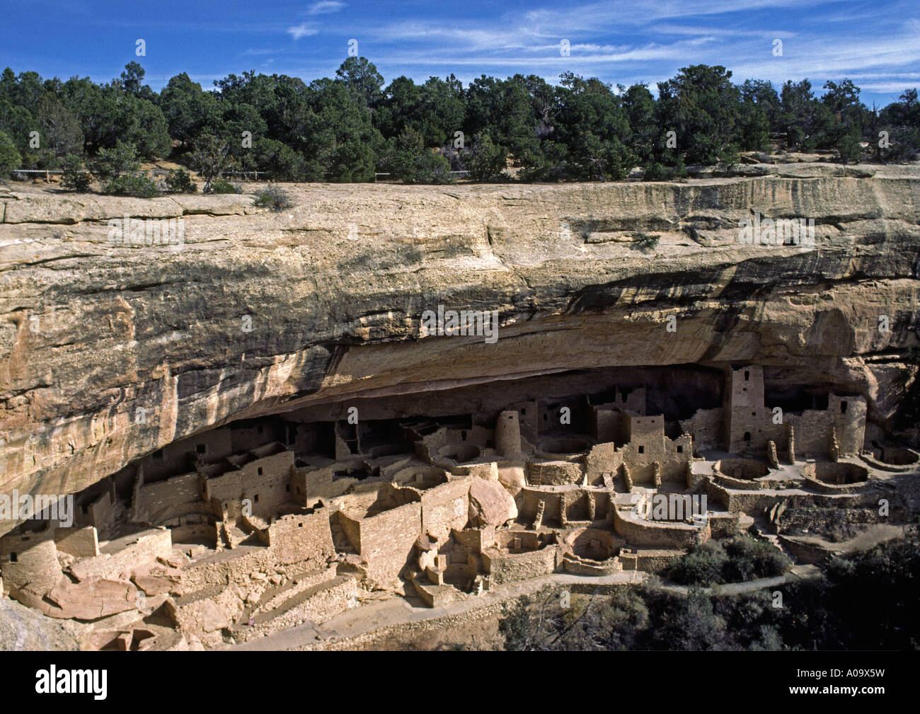 CLIFF PALACE is the most extensive ANASAZI ruin of MESA VERDE NATIONAL PARK COLORADO 1200 AD - Stock Image