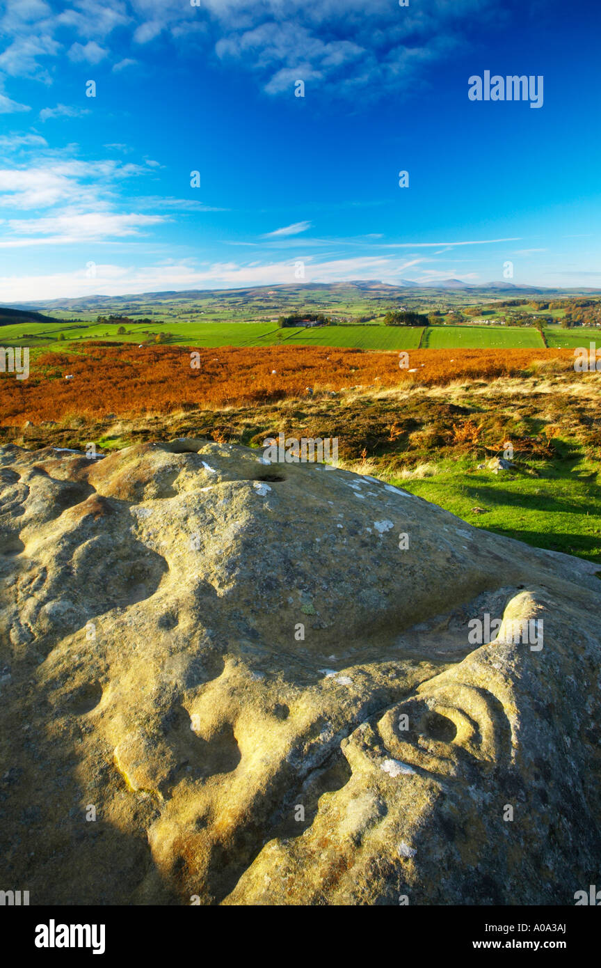 England Northumberland Northumberland National Park Pre historic cup and ring marks rock art on a stone at Lordenshaw - Stock Image