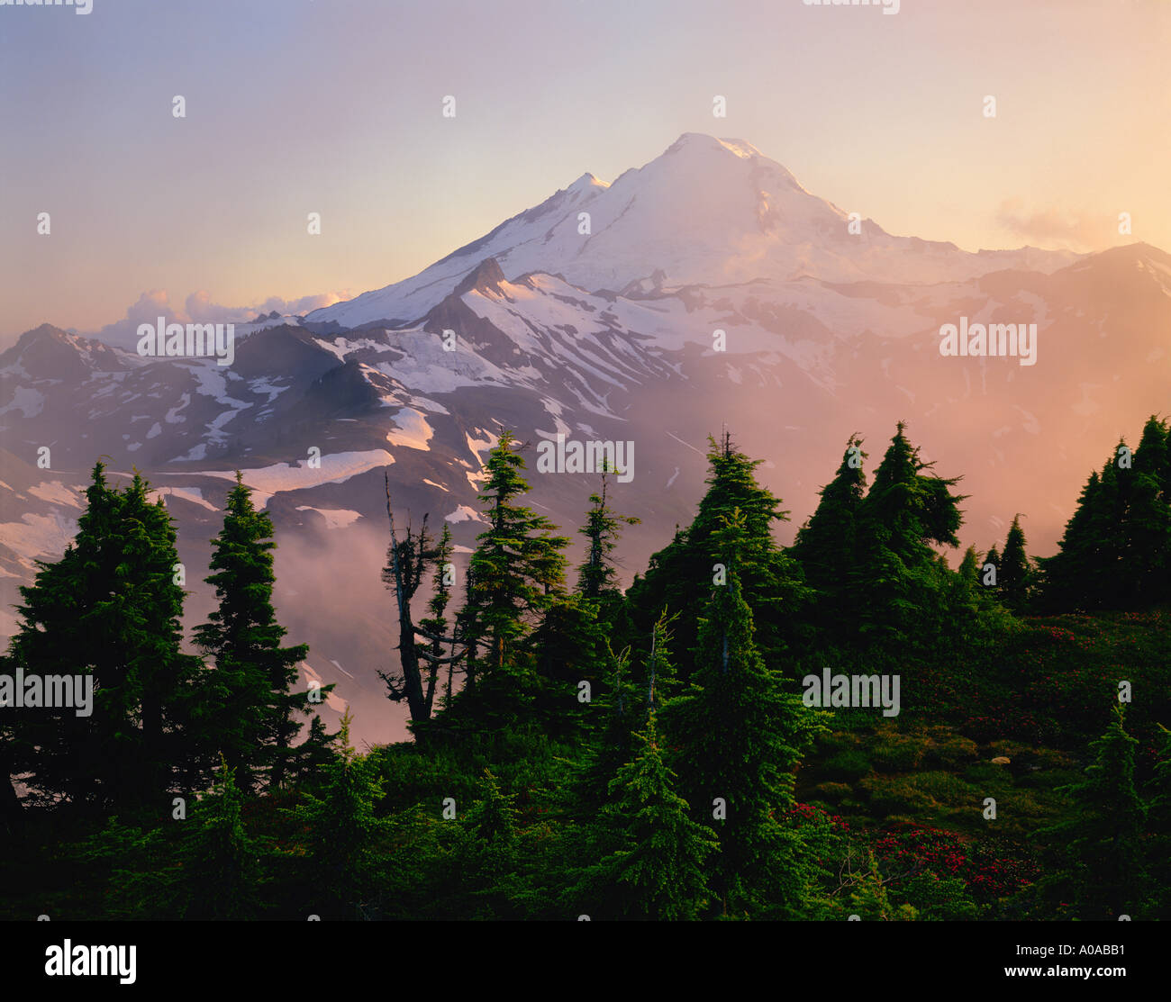 Mt Baker through the mist at sunset from Table Mountain - Stock Image