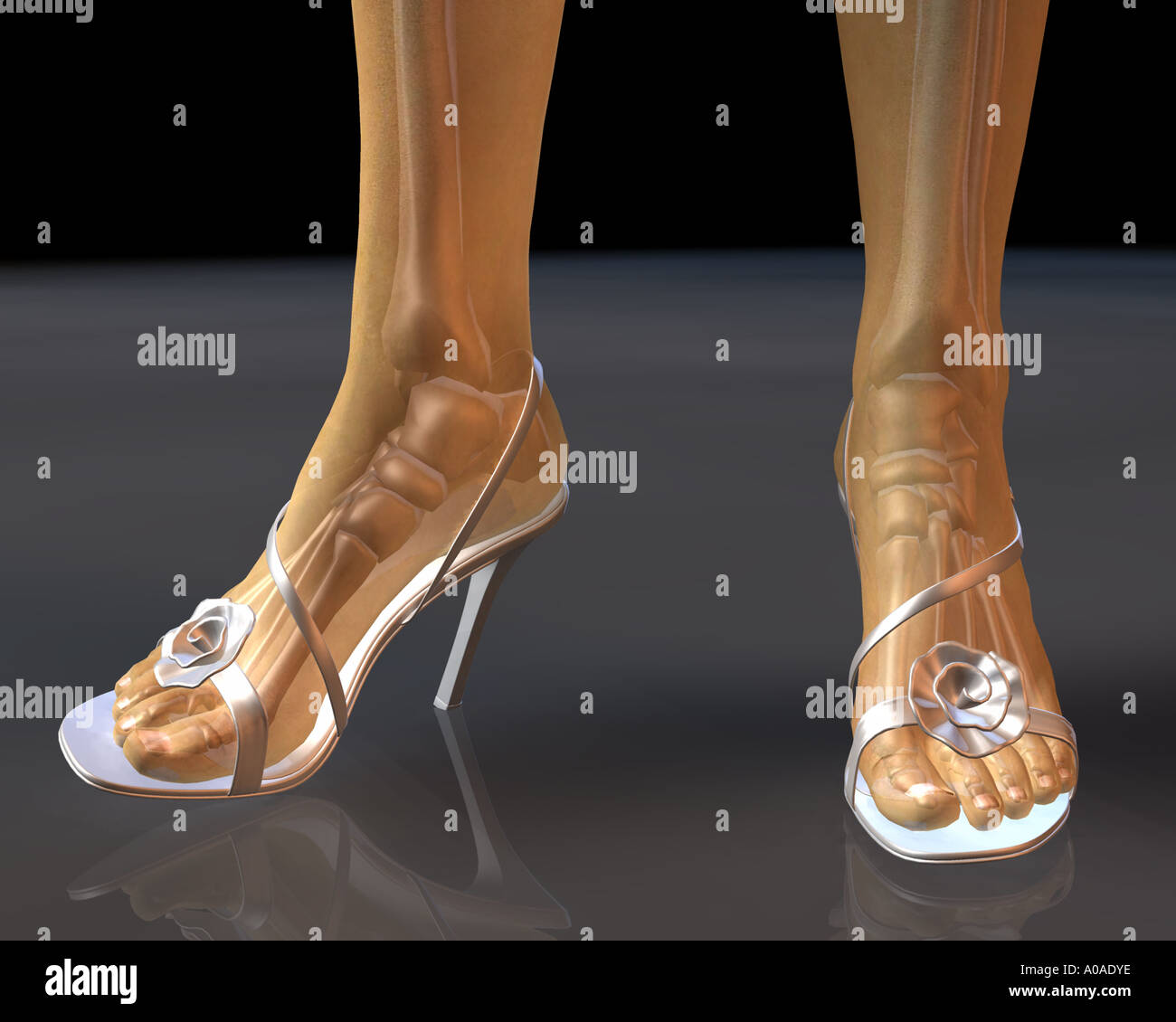 Illustrative Diagram Showing Female Feet And Legs In High Heel Shoes