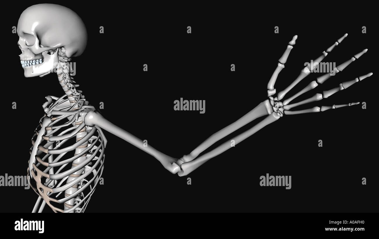 Illustrative Diagram Showing Skeleton Arm And Hand Outstretched