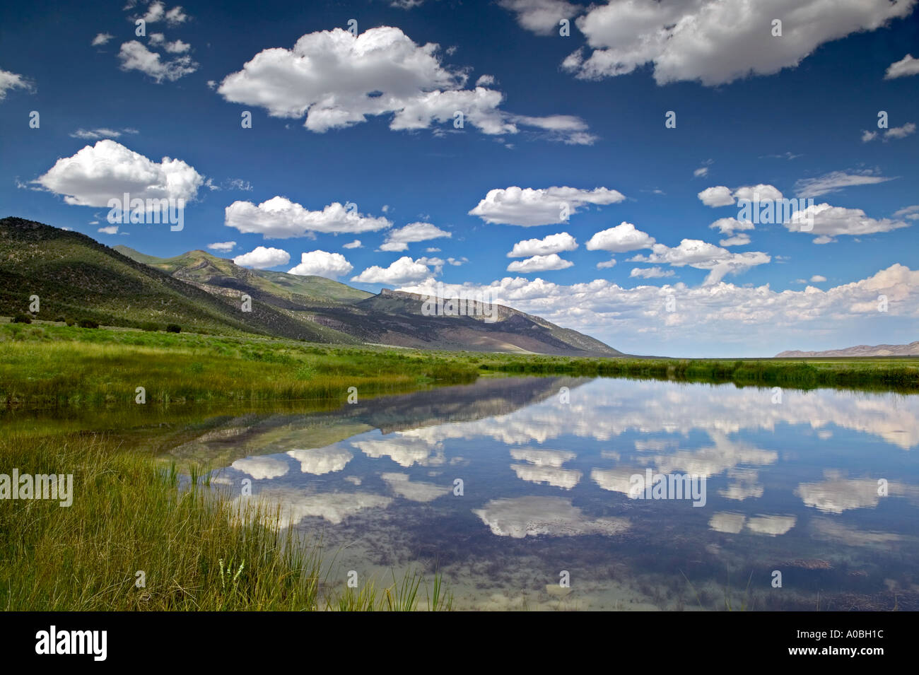 Small pond and clouds Ruby Lake National Wildlife Refuge Nevada - Stock Image