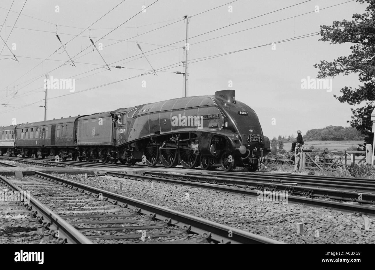 Mallard steam engine running through Cambridge - Stock Image