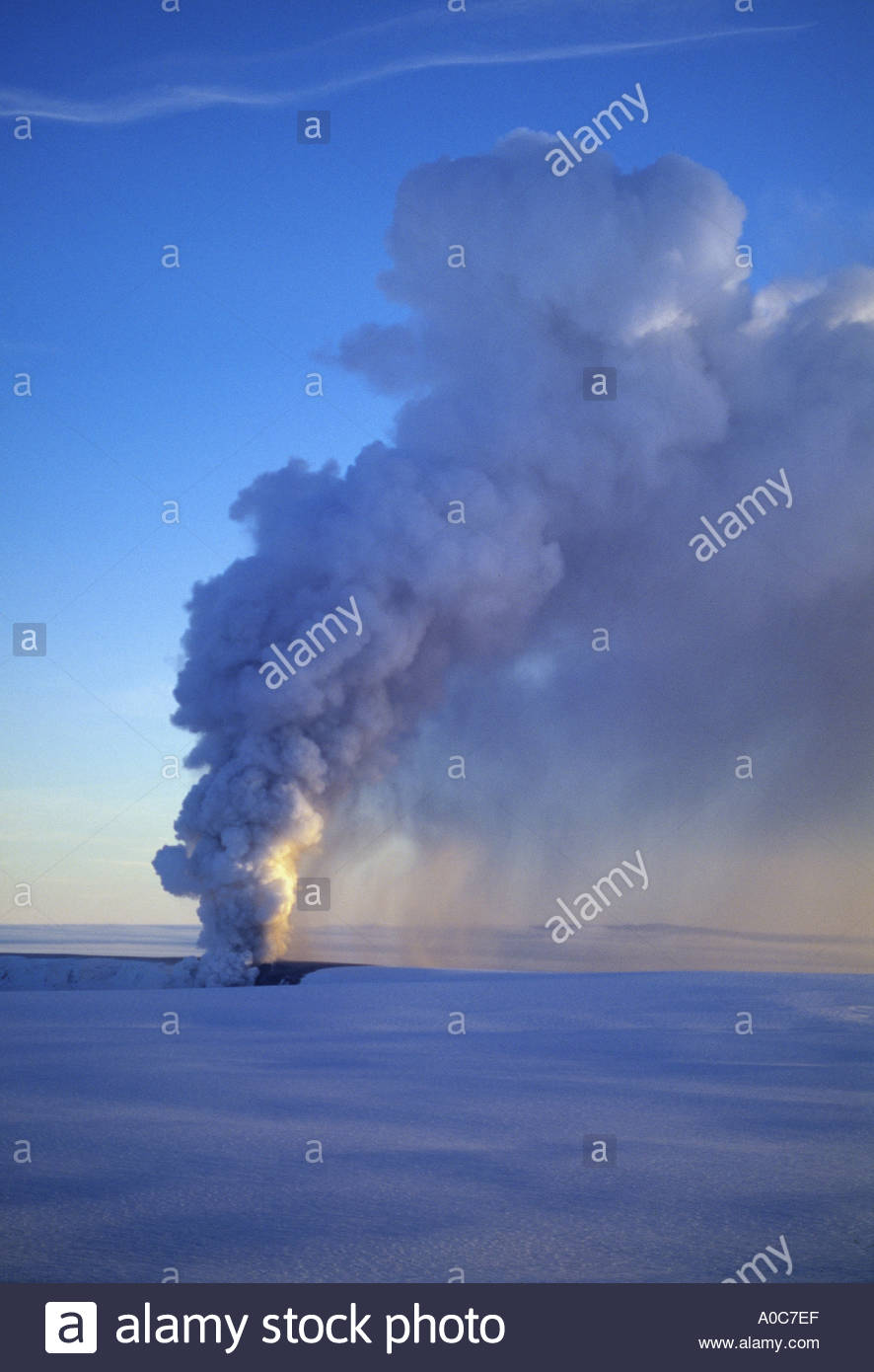 Geyser erupts and steam rises high into the clear blue sky - Stock Image