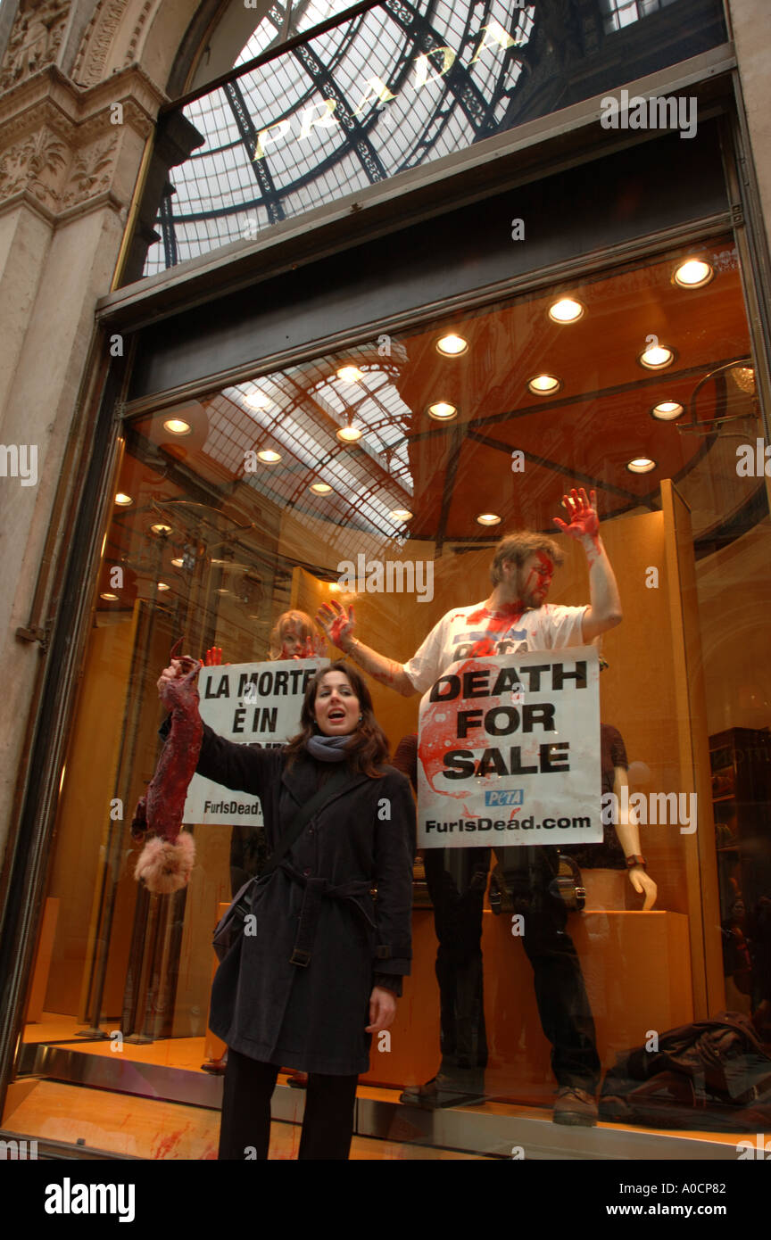 Peta animal rights protesters take over the Prada shop window in the Galleria Vittorio Emanuele in Milan, Fashion Stock Photo