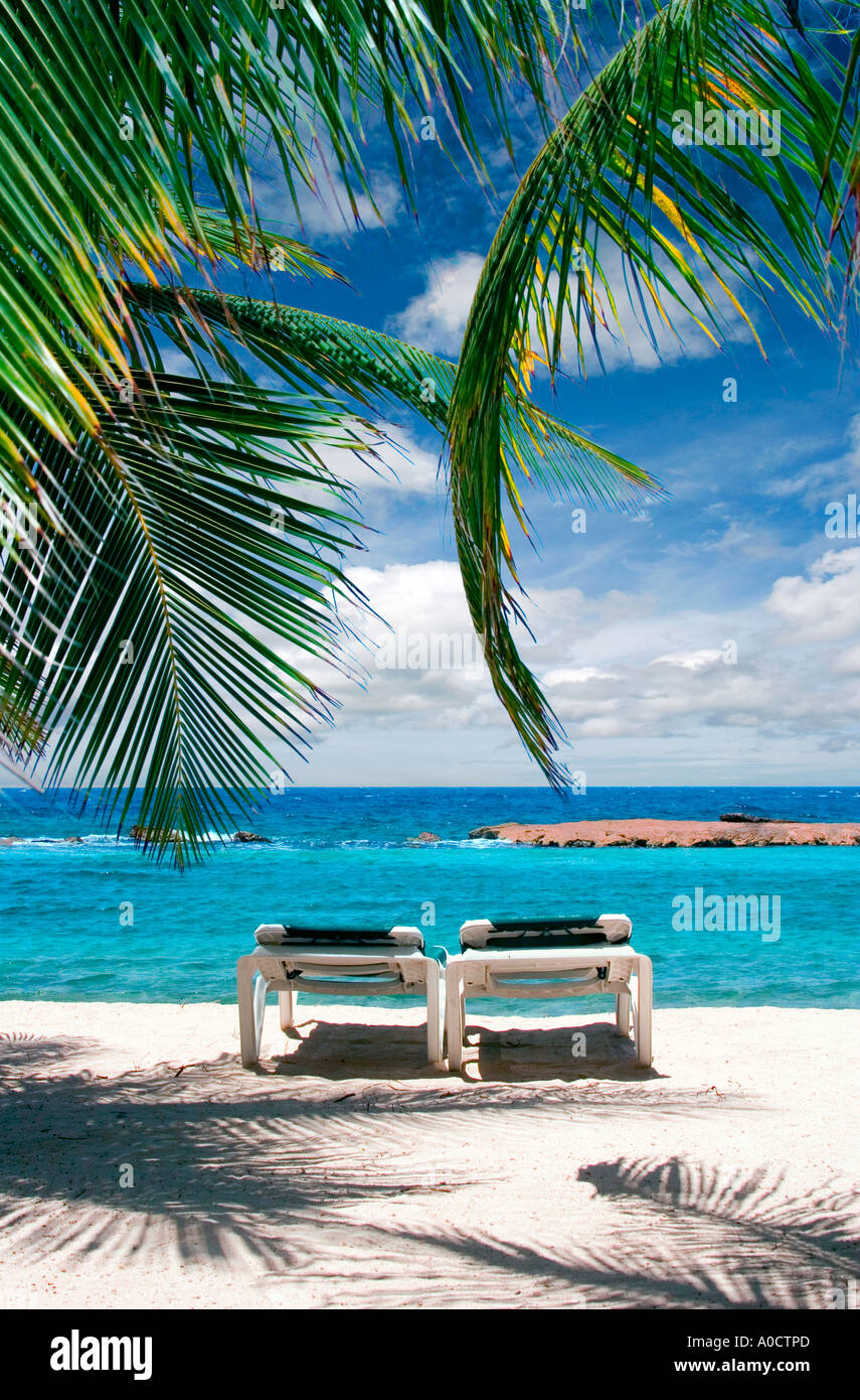 Two beach chairs under palm tree on beach in Curacao Stock Photo