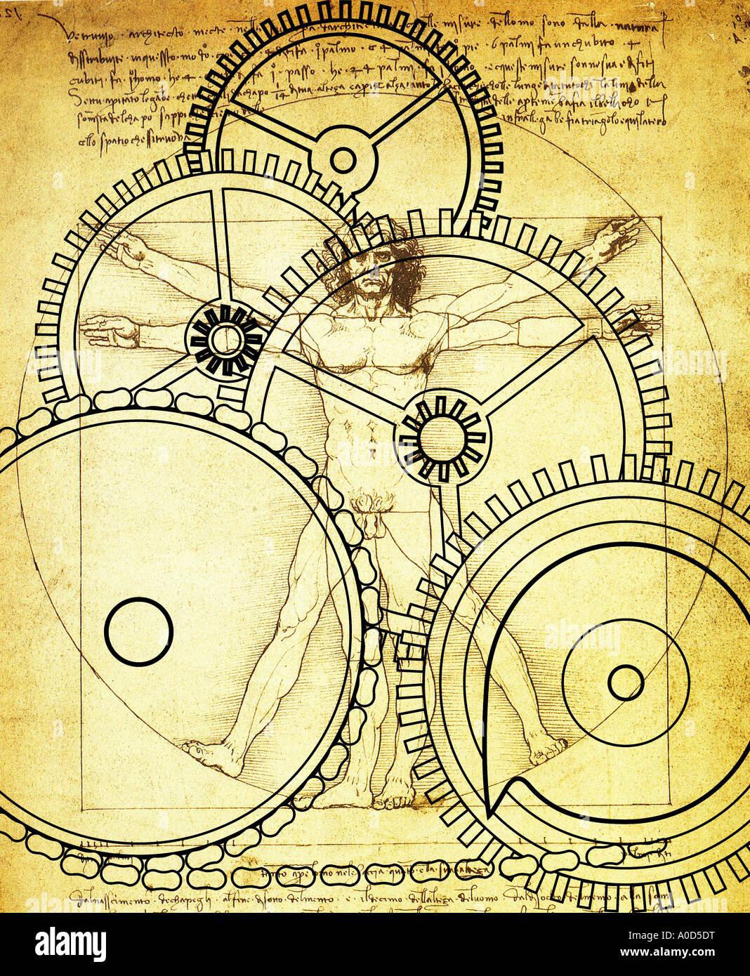 Vitruvian Man Leonardo Da Vinci Stock Photos & Vitruvian Man ...