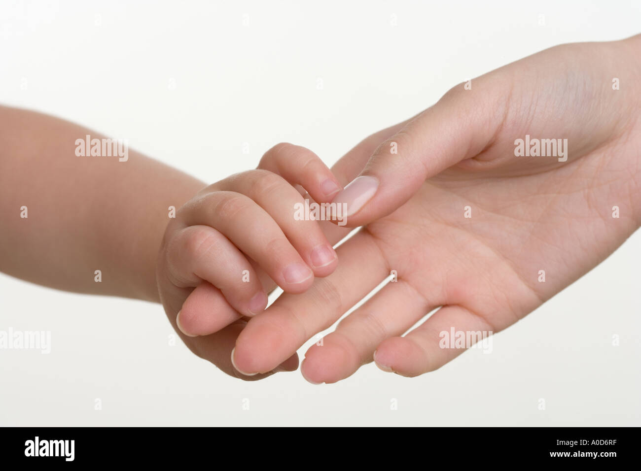Baby holding hands with mother - Stock Image