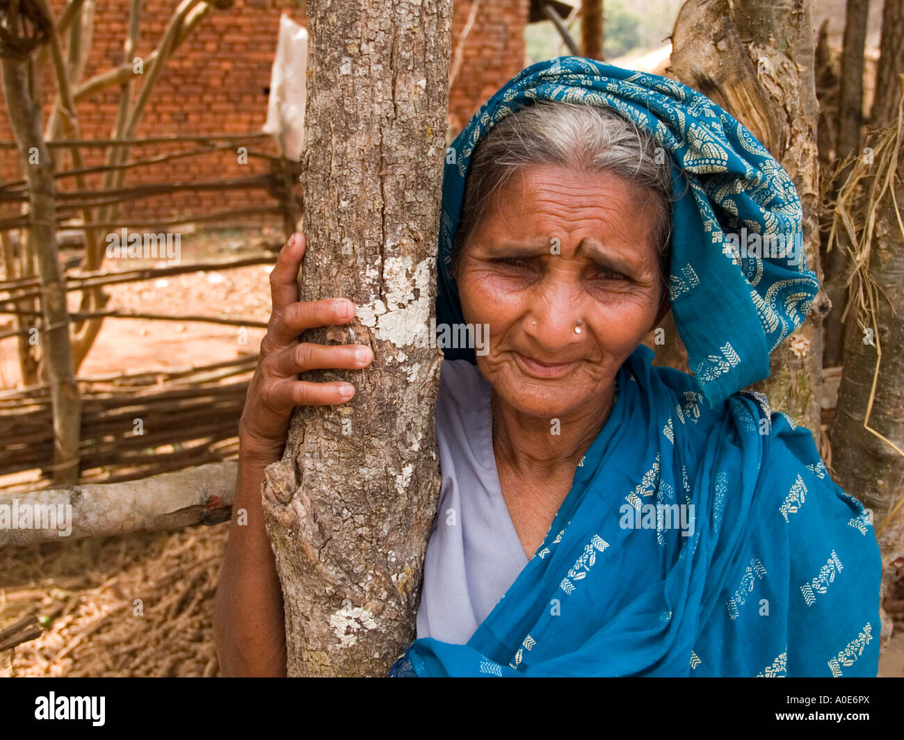 A grey haired village woman in tribal Orissa poses with an amused smile - Stock Image