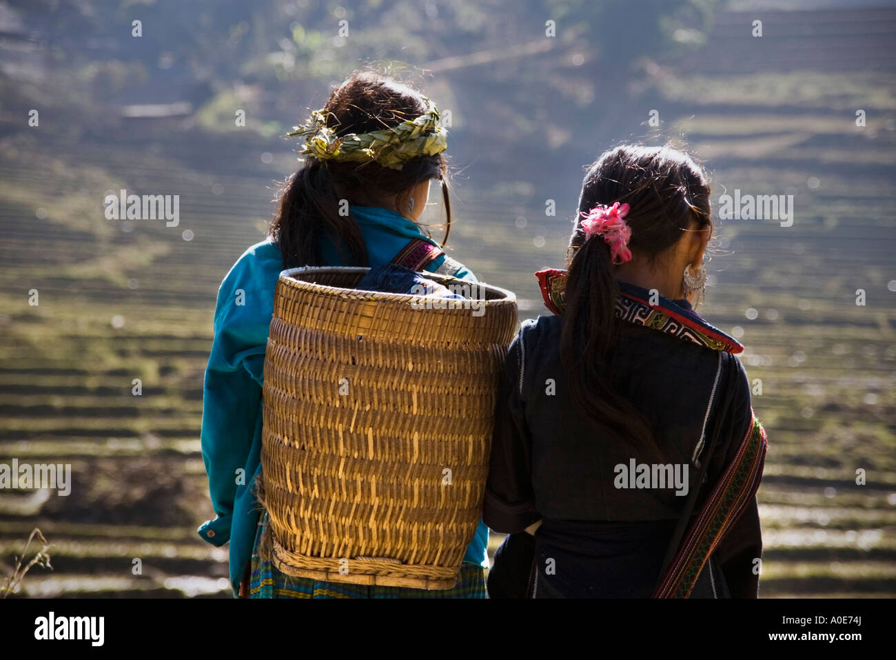 Rear view of two young Black H'Mong girls with a woven bamboo basket, standing facing terraced rice paddies near Stock Photo