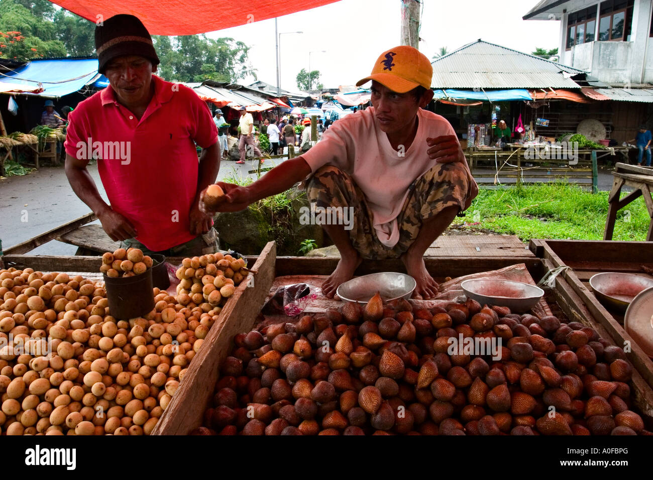 Selling Salak (Salacca zalacca) and Langsat (Lansium Domesticum) at Tomohon market, Sulawesi (Celebes), Indonesia, Asia - Stock Image