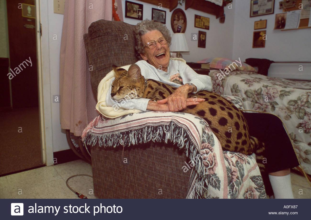 Pet African Serval Visiting Old Peoples Nursing Home