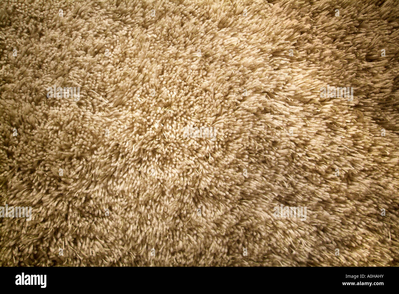 Chunky Shag Texture Tan Buff Brown Thick Pile Carpet Rug
