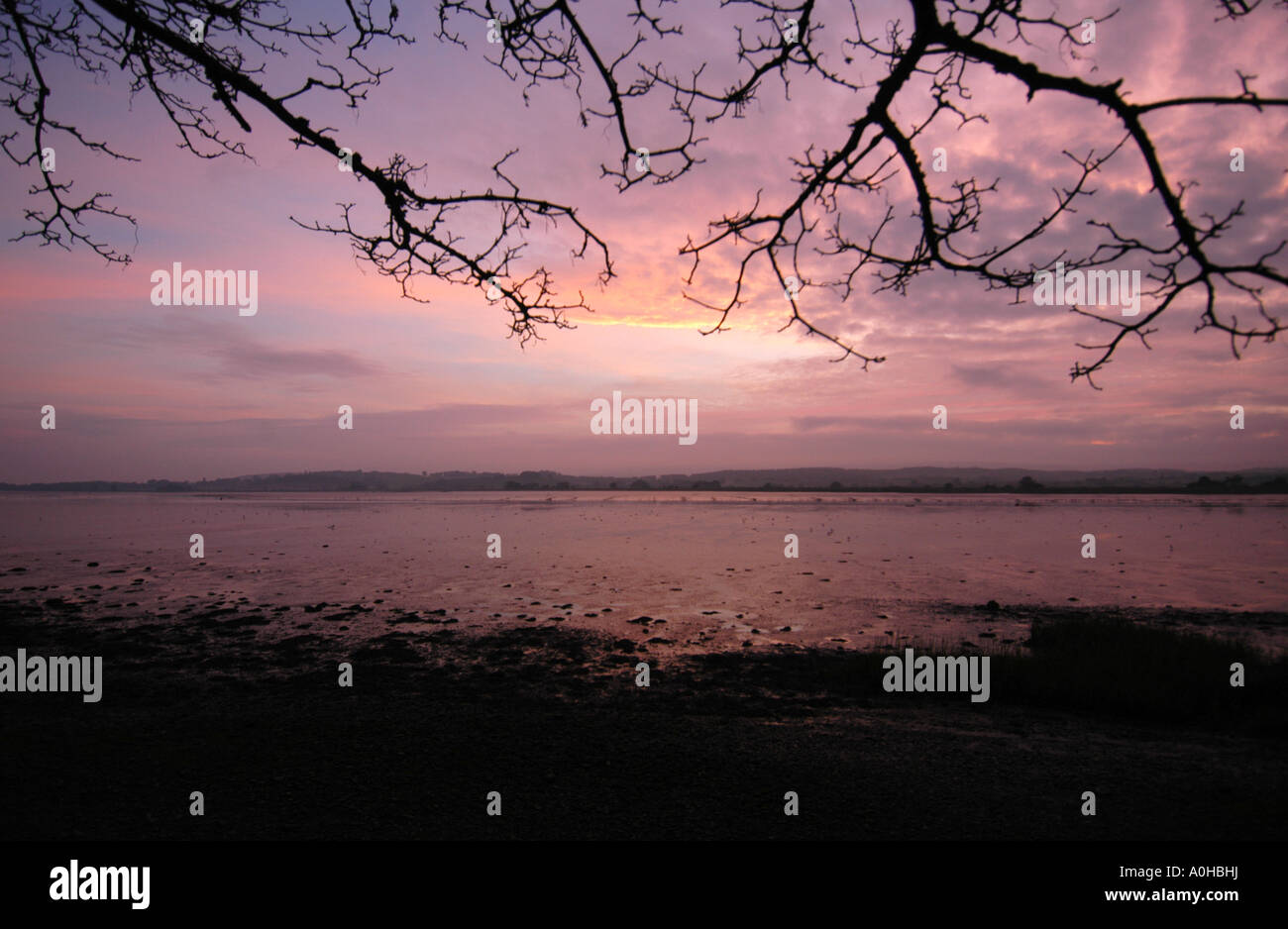 The last rays of early winter sunshine over the Exe Estuary as seen from Topsham near Exeter Devon - Stock Image