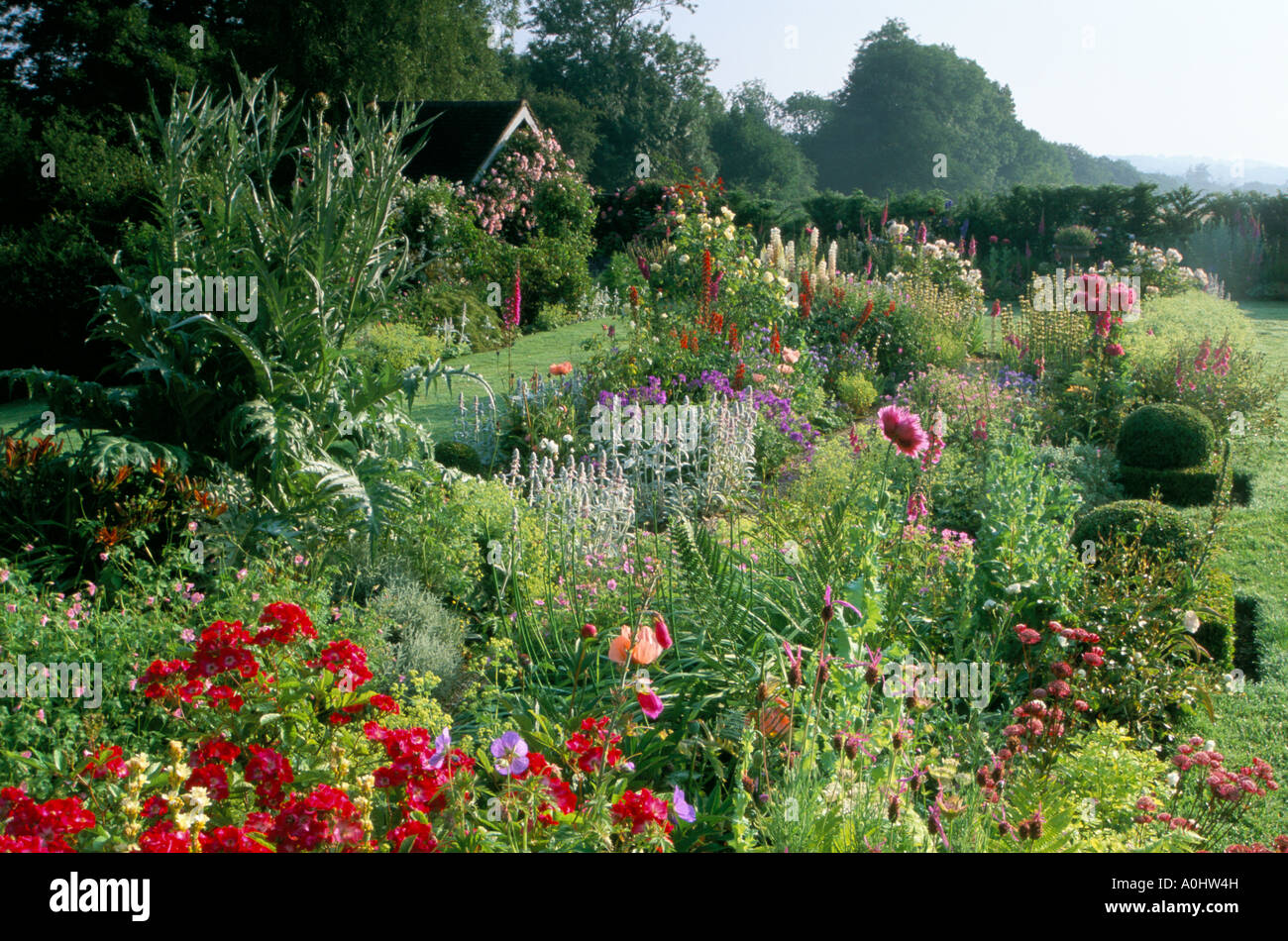 Sussex mixed border in summer roses annuals and perennials stock roses annuals and perennials izmirmasajfo