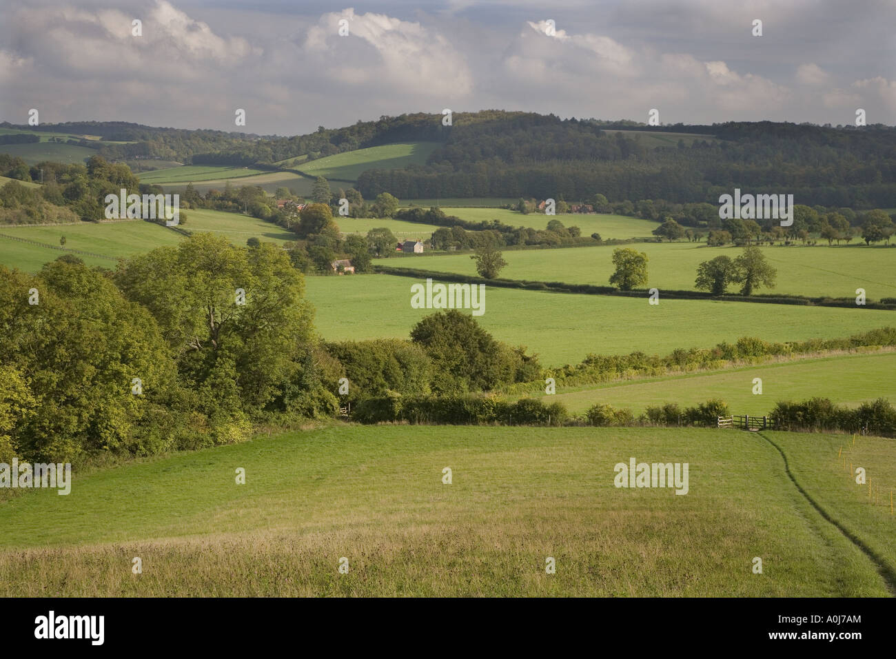 Hambleden Valley Buckinghamshire UK - Stock Image