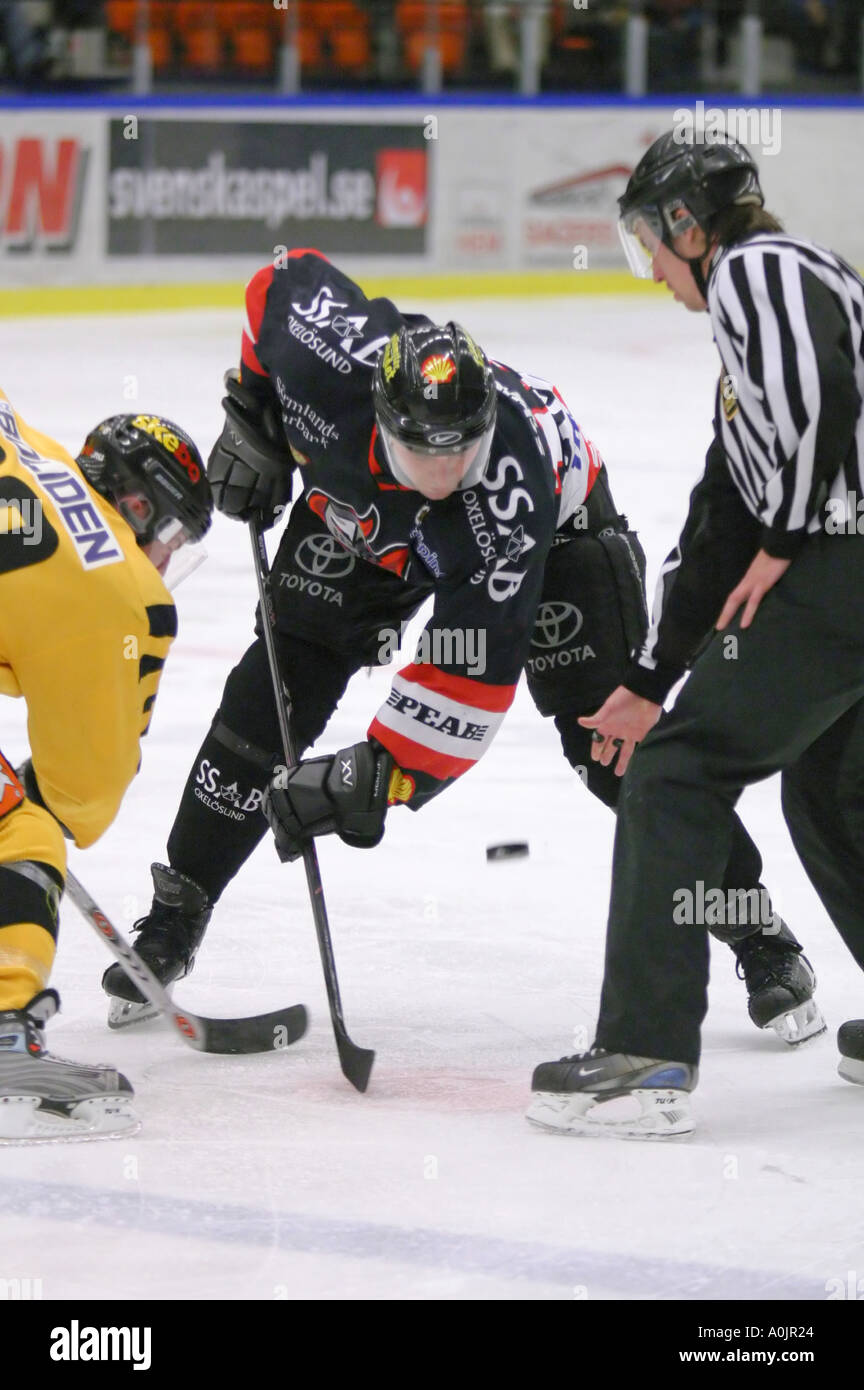 Face off in a game of ice hockey - Stock Image