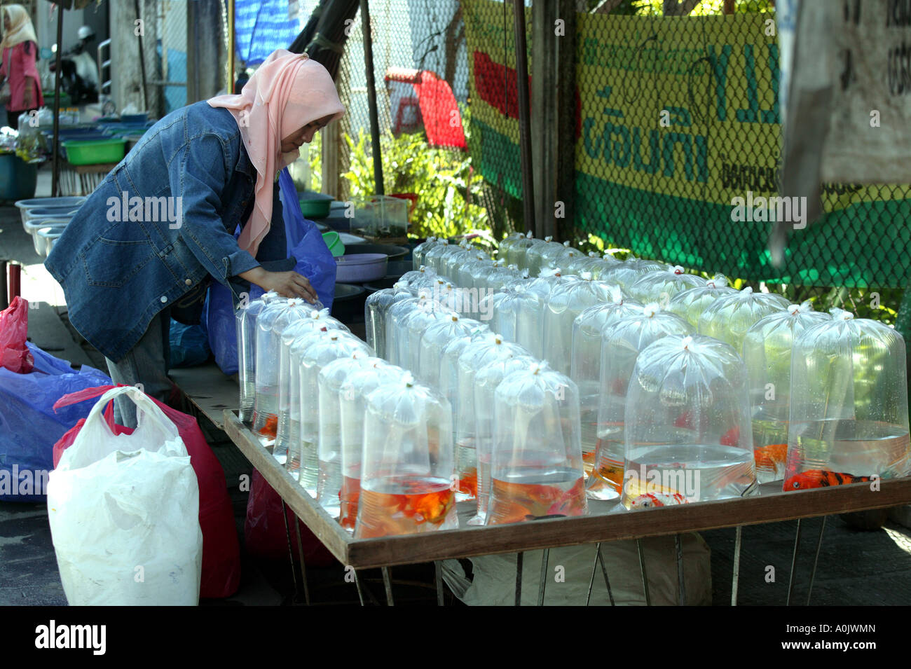 A stall selling goldfish in bags at a Muslim market in Hat Yai Stock