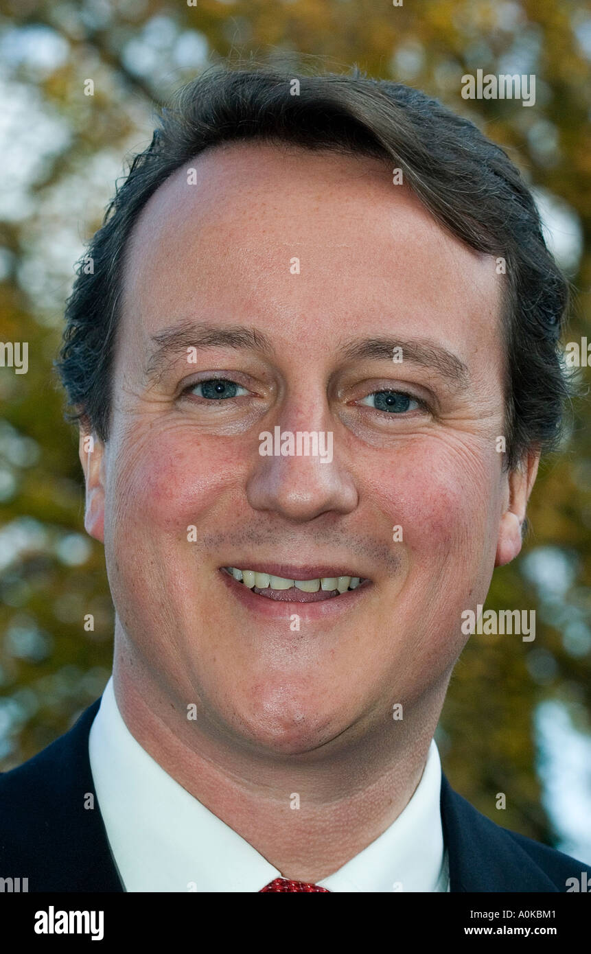 UK Conservative Party leader Rt Hon David Cameron MP, Member of Parliament for Witney - Stock Image