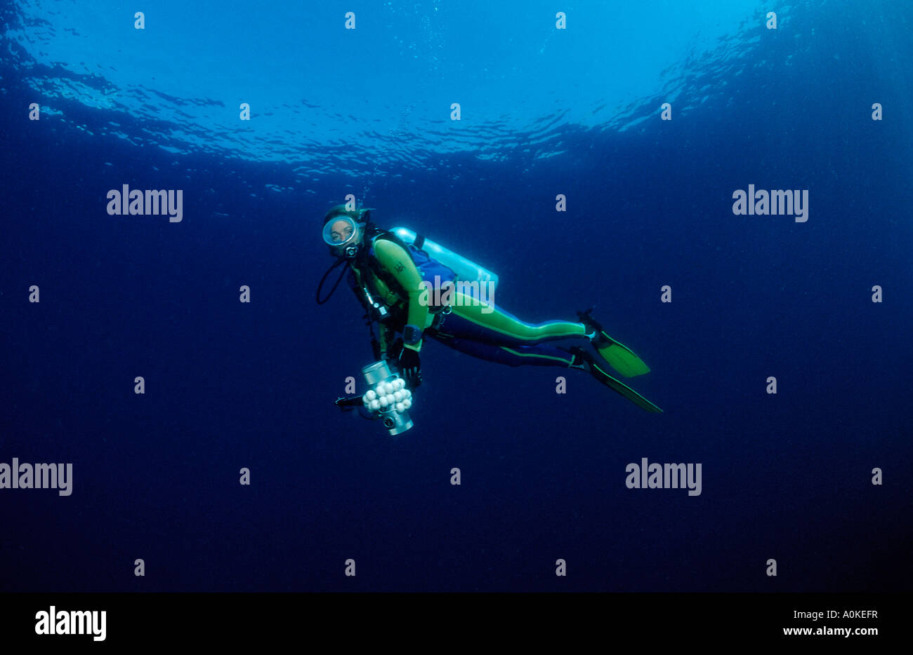 Diver with Photo Equipment Bali Indo Pacific Indonesia - Stock Image