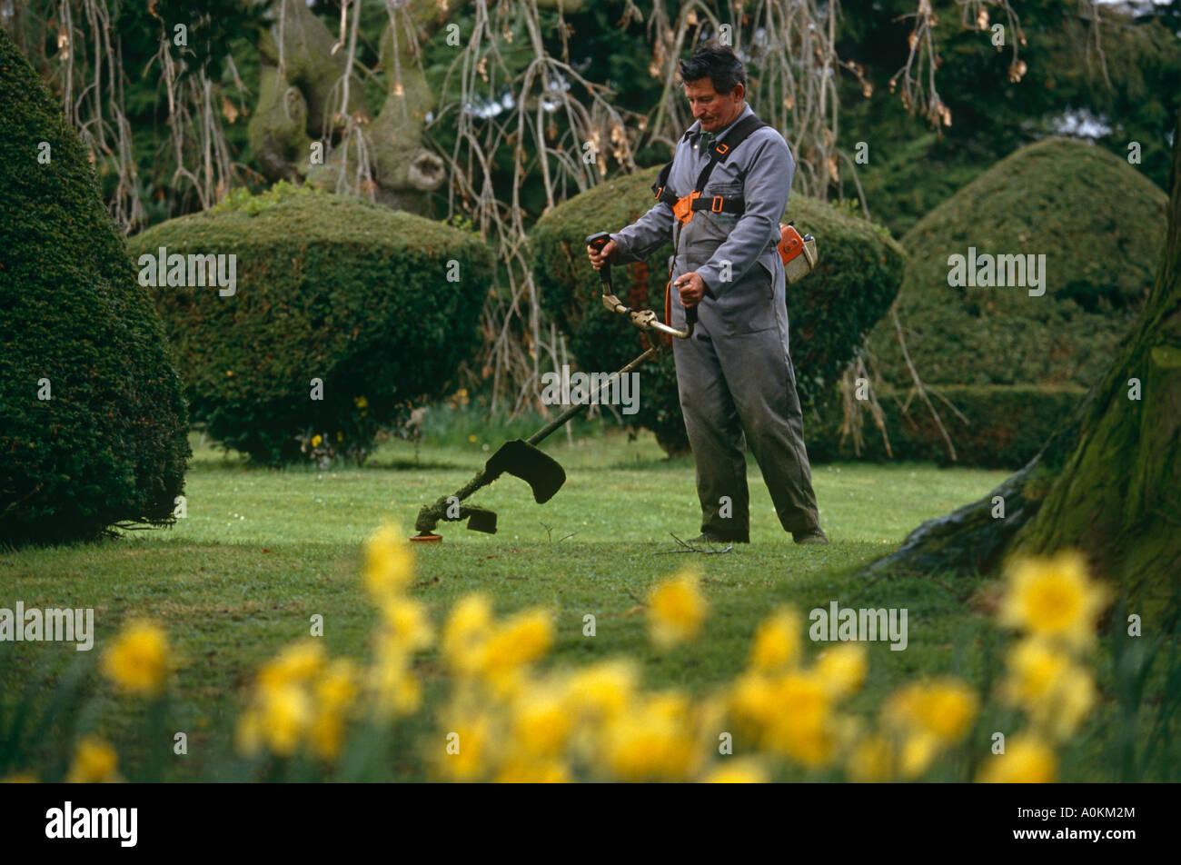 A municipal gardener cuts the lawns in a park in Braintree Essex UK - Stock Image