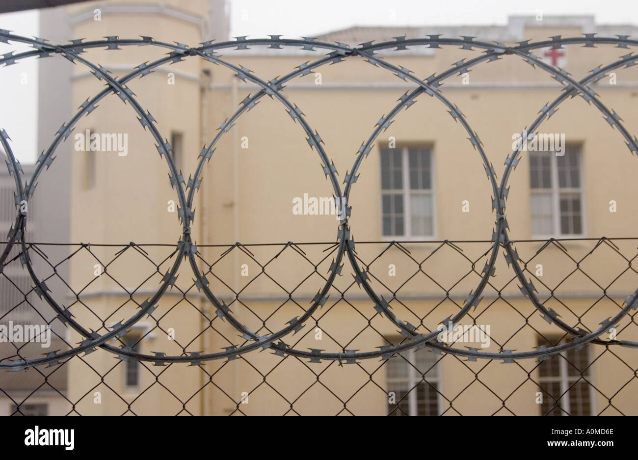 A chain link fence and coiled concertina wire in frong of a yellow ...