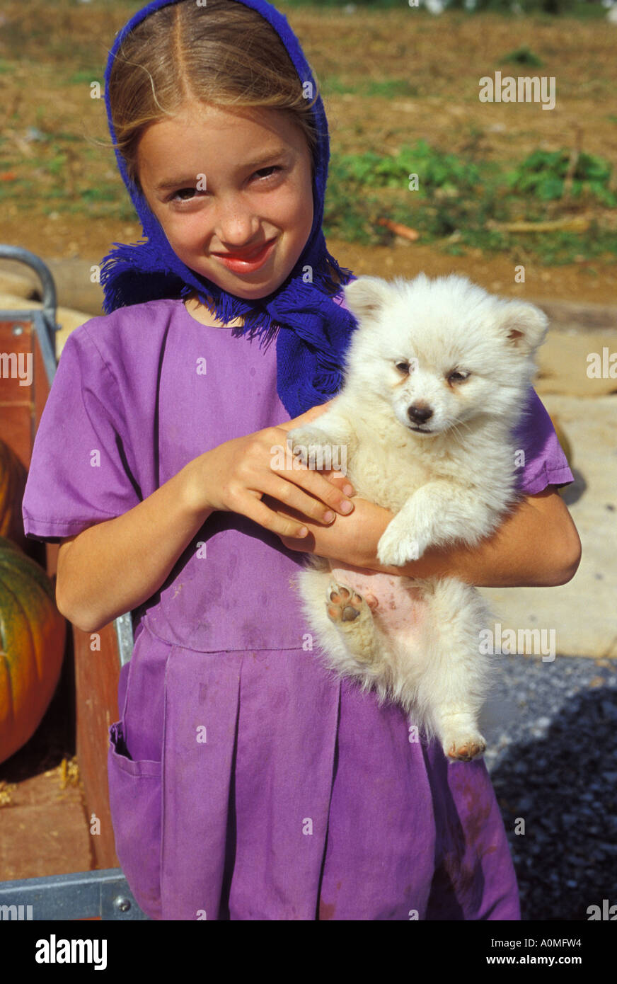 1 one young amish girl white pet dog pup puppy tradtional purple