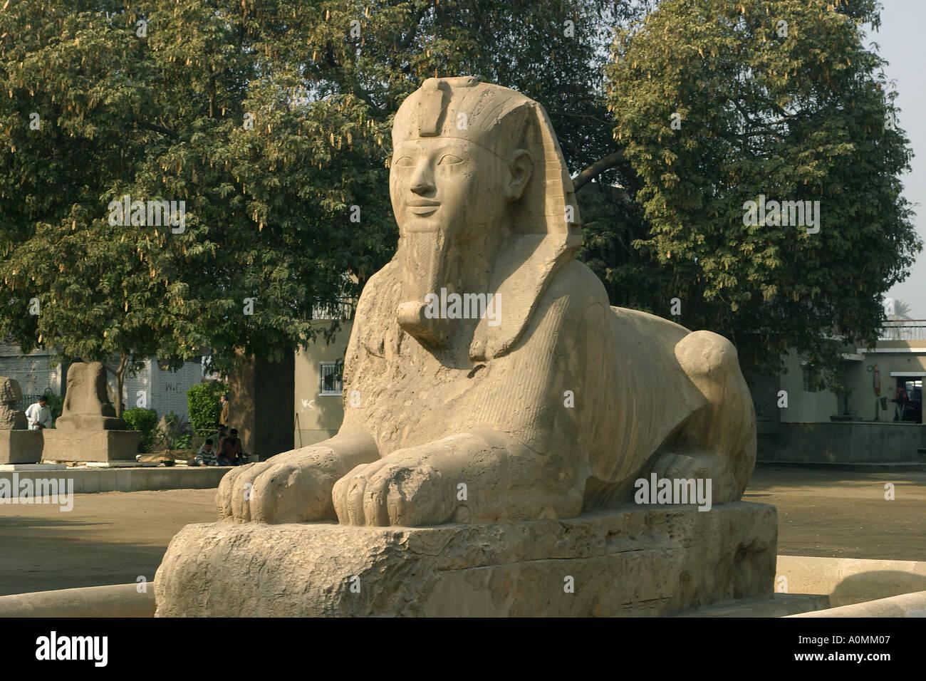 Egypt Memphis Sphinx - Stock Image