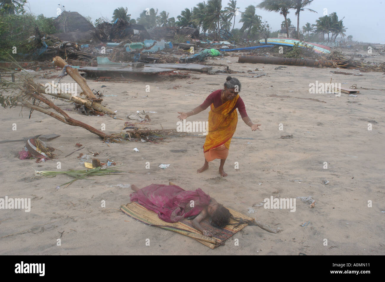 Indian Ocean Earthquake And Tsunami Natural Disasters