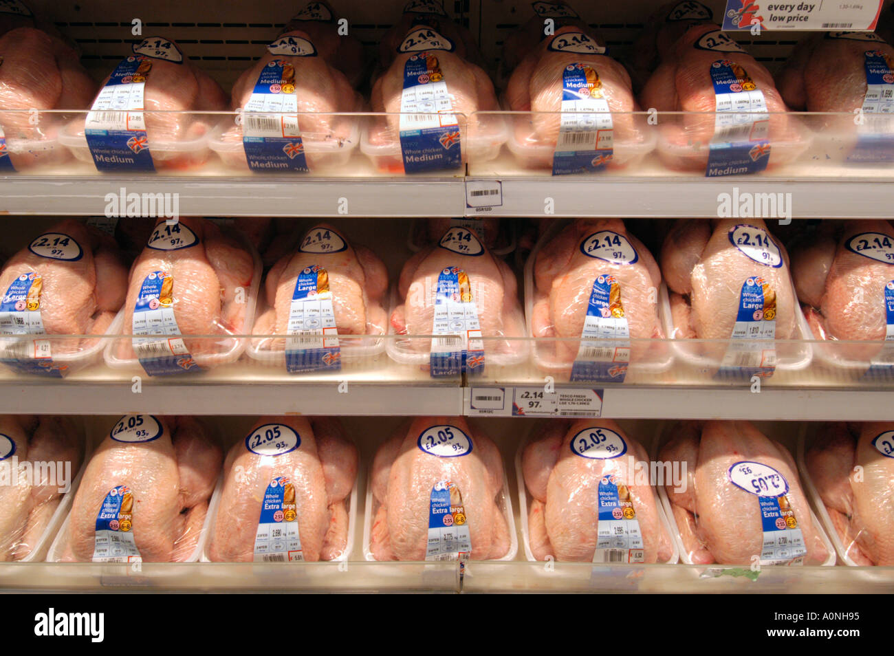 Rows of chickens in Tesco Extra superstore England UK - Stock Image