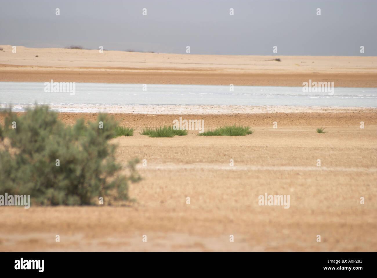 A land locked salt water lake near Egypt s Bittter Lakes
