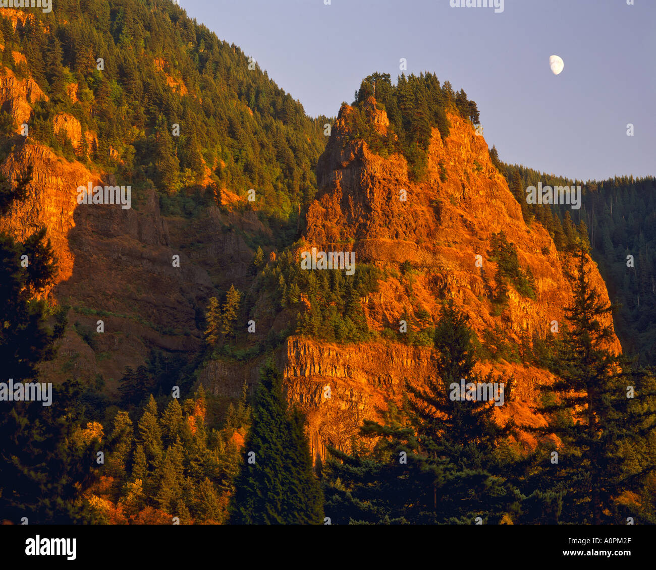Moonrise over the Gorge Columbia River Gorge National Scenic Area Mount Hood National Forest Oregon - Stock Image
