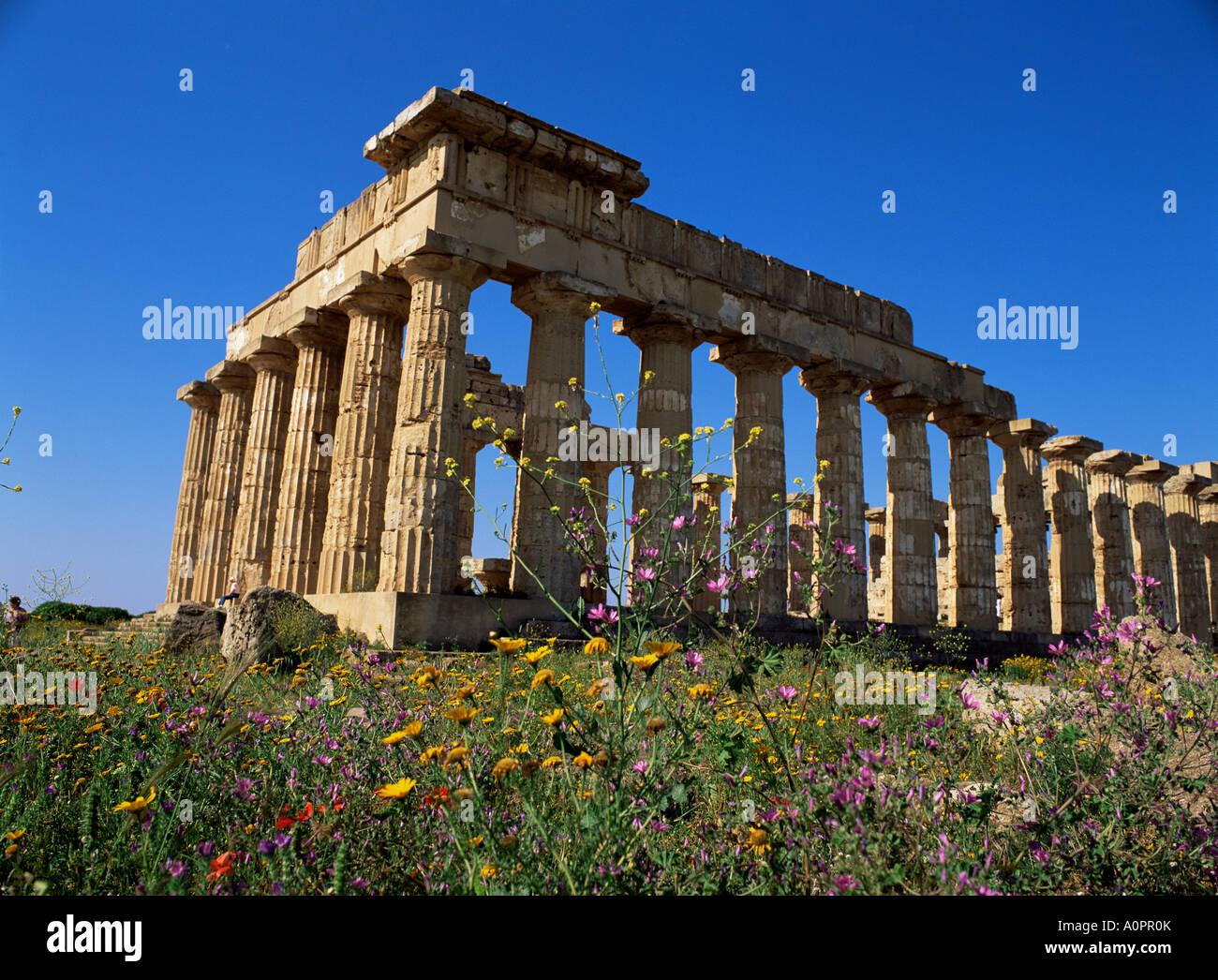 Temple E dating from 5th century BC Selinunte near Castelventrano Sicily Italy Europe - Stock Image