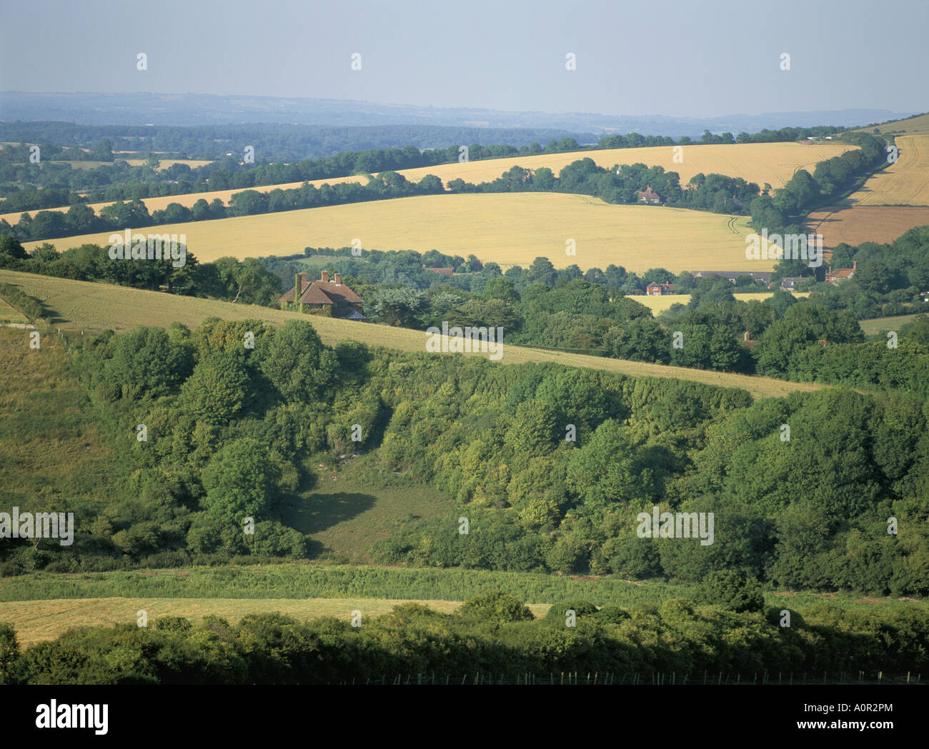 The South Downs East Sussex England United Kingdom Europe - Stock Image
