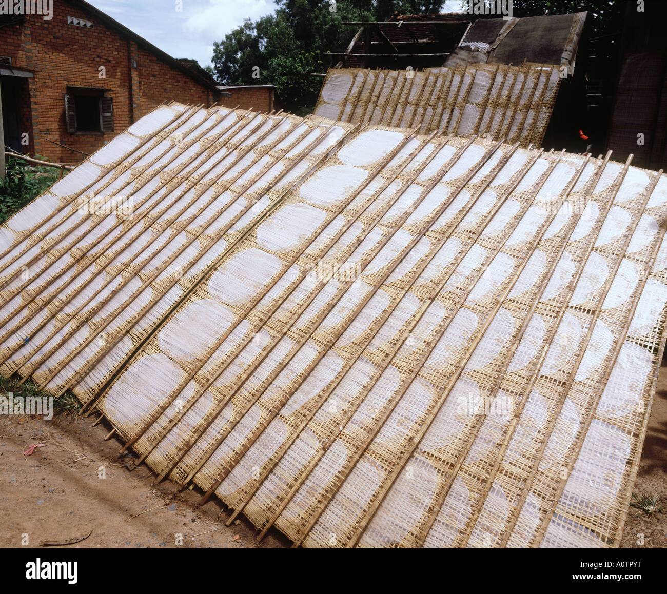 Making Rice Paper Cu Chi - Stock Image