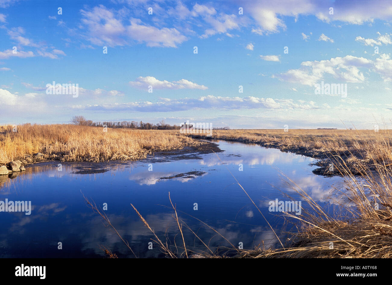 Prairie Pothole in North Dakota - Stock Image