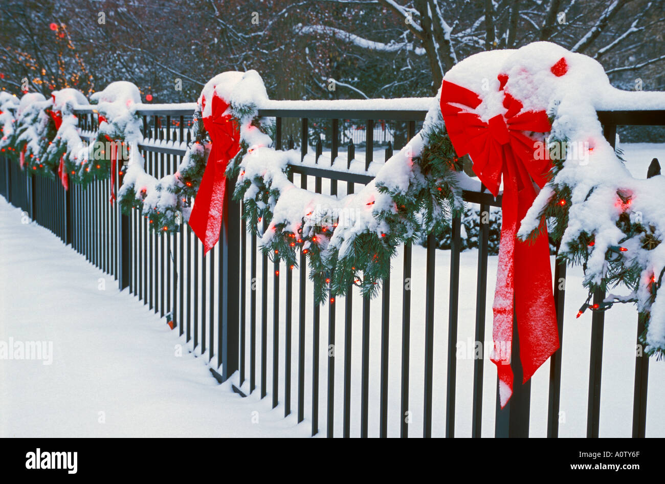 Red bows and Christmas lights cover in snow along a fence - Stock Image