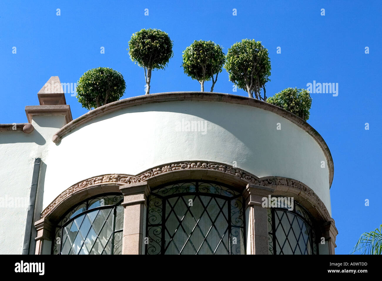 Clipped bushes on a building in Mexico City - Stock Image