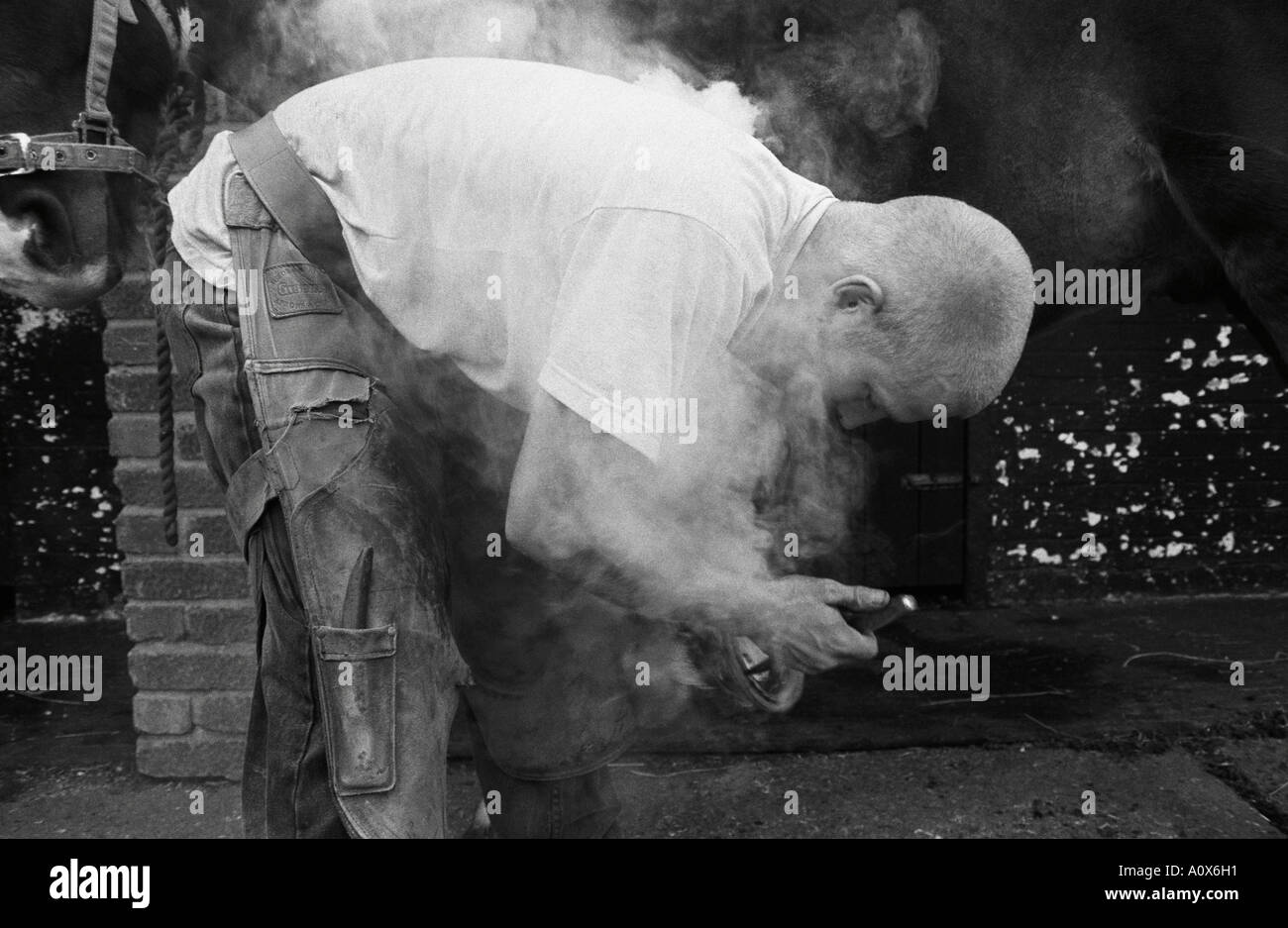 London, UK. Farrier shoeing a horse - Stock Image