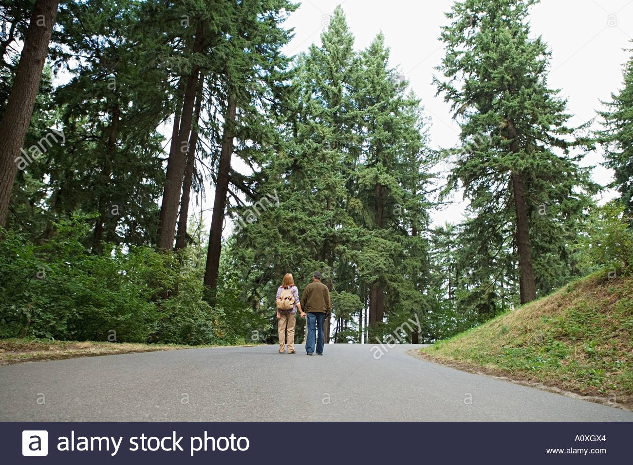 Couple walking on road through forest - Stock Image