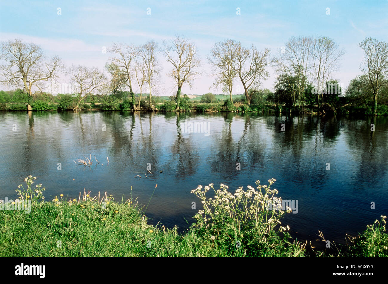 River Thames Medmenham Buckinghamshire England United Kingdom Europe Stock Photo